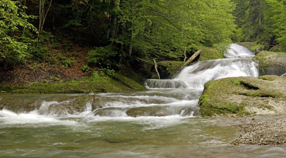 Wanderungen entlang der Westallgäuer Wasserwege