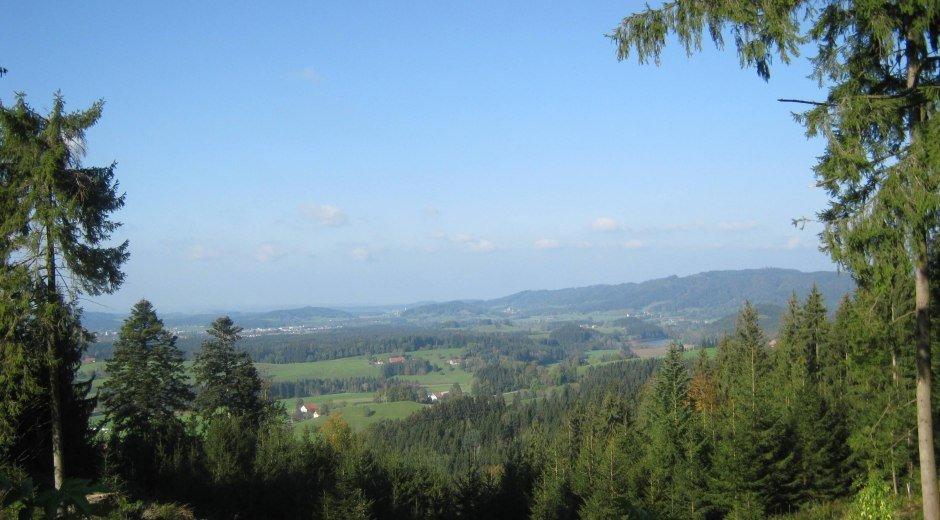 Gemeinde Maierhöfen im Westallgäu Ortsansicht