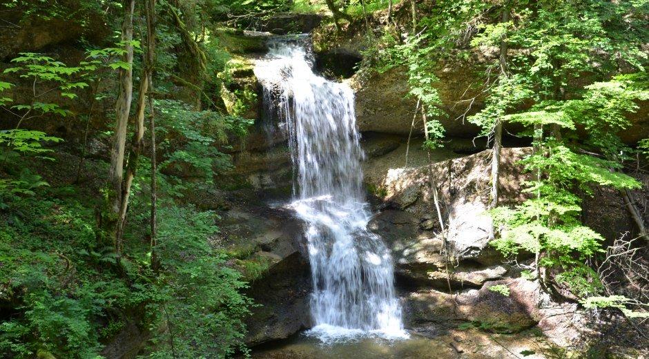 Hasenreuter Wasserfall Scheidegg © Scheidegg-Tourismus