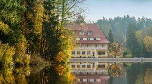 hotel_waldsee_043_ys