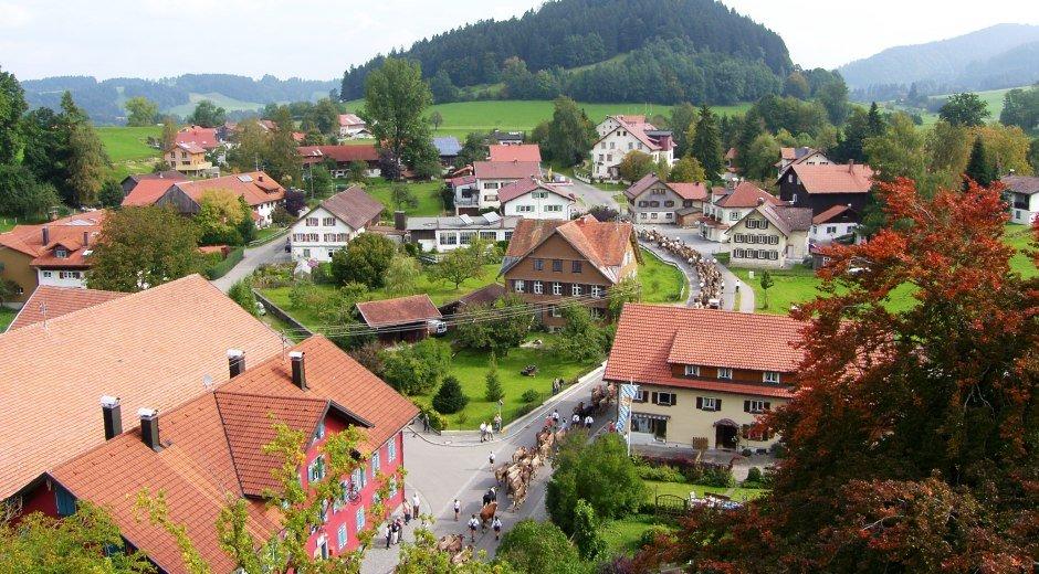 Gemeinde Grünenbach im Westallgäu Viehscheid im Herbst