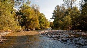 Westallgäuer Wasserwege Untere Argen