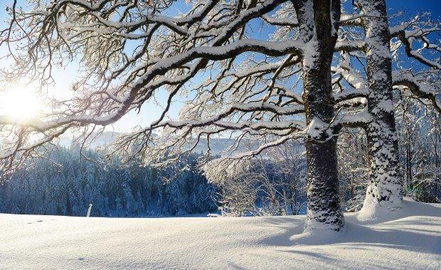 Winterlandschaft im wunderschönen Westallgäu © Thomas Gretler