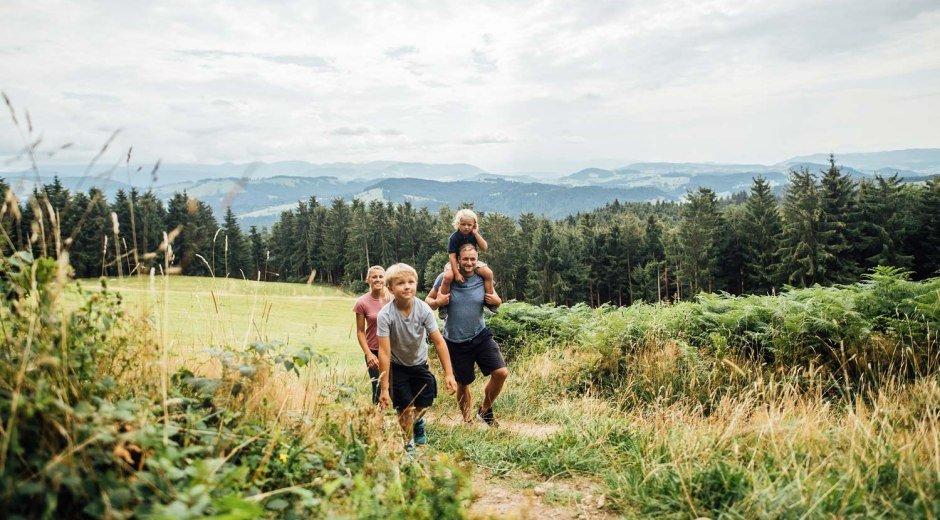 Genießen Sie auf verschiedenen Wanderrouten die reine Luft im Westallgäu, sowie die einzigartigen Alpenpanoramen