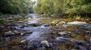 Westallgäuer Wasserwege Flusslandschaft