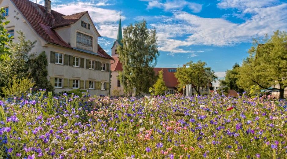Gemeinde Opfenbach Ortsansicht Frühjahr