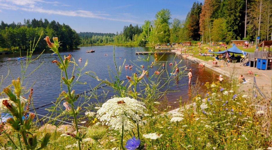 Ausblick auf den Waldsee in Lindenberg im Allgäu